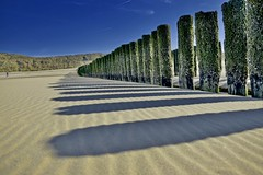 Pales on the Beach (Kai Beinert) Tags: beach pales sun netherlands blue sky sand dunes pfähle strand dünen domburg nikon shadow schatten hdr