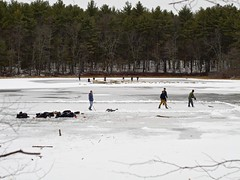 2016.01.17-13.40.18 (Pak T) Tags: hockey frozen pond outdoor iceskating westford pondhockey grasspond olympusmzuiko45mmf18