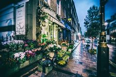 Titanias Garden (John Willoughby) Tags: england london st unitedkingdom hour florist w1 marylebone gloaming