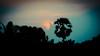 Yoga tour by Yantra 2016 Kerala India (Raimond Klavins | Artmif.lv) Tags: old travel sunset india elephant nature yoga sunrise landscape temple fire gold ganesha ancient praying landmarks kerala monks gods spirituality spiritual shiva madurai yantra gopuram klavins artmif darakova pudzha