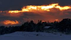 Sunset behind Lga Segelkobben (Porkkala, Kirkkonummi, 20160123) (RainoL) Tags: winter sunset sea sky cloud snow finland geotagged island frost january balticsea fin seashore 2016 uusimaa porkala nyland kirkkonummi porkkala kyrksltt 201601 fz200 20160123 geo:lat=5996806223 geo:lon=2439119822