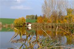 Herbst am Teich 35 (lady_sunshine_photos) Tags: austria europa herbst teich niedersterreich bootshaus oase weinviertel herbstfrbung nexing