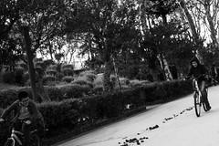 Bambini in bici (gavim88) Tags: street panorama roma scale lago teatro strada italia nuvole bambini mani case bn chiesa sguardo cielo mano vista augusta piazza duomo acqua veduta monumenti catania siracusa artista scorcio cerchio giostre anfiteatro palazzi palla bimbi passeggio antichit scalinata passeggiata guardo altalena vecchi romani chiese giocoliere seduti sicilis arrte scorcia gavim88 canoneos600d canon24mm28stm oanzioano nonnanipoti