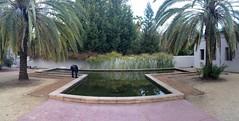 T Pool (frankrolf) Tags: amorc rosicrucianegyptianmuseum