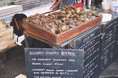 Oysters (revolution540) Tags: uk sea england food beautiful real natural market britain centre united great central shell tasty kingdom fresh company eat oysters borough essex