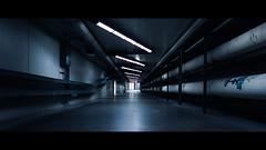 The Cinematic Frame (Kapitan Curtis) Tags: school cinema film college field 35mm nikon university fuji kodak slide f100 center class manitoba velvia transparency agriculture 50 cinematic f5 tier anamorphic dafoe f6 pembina of