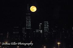 New York Skyline (Joshua Eller) Tags: nyc newyorkcity fullmoon manhatten freedomtower