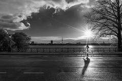 Alsterradler (digital_underground) Tags: street sunset shadow sun lake bike germany deutschland hamburg schwarzweiss alster