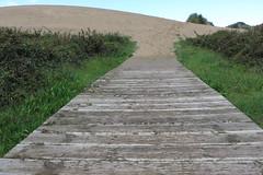 Love is stronger than justice (Micheo) Tags: naturaleza nature way lost spain song path sting tracks asturias caminos duna fuerza cancin playadesalinas