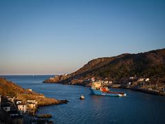 Leaving Town (Tk_White) Tags: st newfoundland lumix boat ship harbour panasonic 28 johns narrows gx8 1235mm