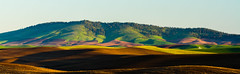 Morning Light (Eli Nelson) Tags: brown green sunrise canon eos butte clear fields moring kamiak ef70200