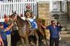 "2015-12-13 (46) r4 Kali Francois on #3 Dream Brew (JLeeFleenor) Tags: photos photography md marylandracing marylandhorseracing laurelpark jockey جُوكِي ""赛马骑师"" jinete ""競馬騎手"" dżokej jocheu คนขี่ม้าแข่ง jóquei žokej kilparatsastaja rennreiter fantino ""경마 기수"" жокей jokey người horses thoroughbreds equine equestrian cheval cavalo cavallo cavall caballo pferd paard perd hevonen hest hestur cal kon konj beygir capall ceffyl cuddy yarraman faras alogo soos kuda uma pfeerd koin حصان кон 马 häst άλογο סוס घोड़ा 馬 koń лошадь bay winner maryland"