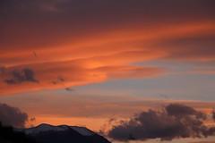 Orange Bud (leblondin) Tags: sunset orange clouds ciel nuages