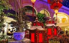 Bellagio_Chinese New Year-2 (Swallia23) Tags: las vegas flowers money hotel peach chinesenewyear casio nv bellagio yearofthemonkey 2016 conservatorybotanicalgarden