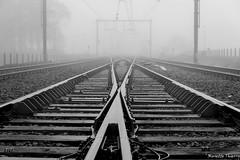 Le choix !!! (musette thierry) Tags: composition train photo nikon foto photographie picture rail photograph capture thierry d600 musette