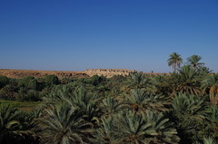 imgp4567 (Mr. Pi) Tags: trees sahara ruin oasis morocco palmtree kasbah meski