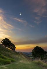 Golden Path (duncan_mclean) Tags: moon grass landscape golden evening path hill crescent auckland devonport mountvictoria