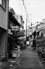 Greengrocer in the Alley (Purple Field) Tags: street bw film monochrome bicycle japan analog zeiss 35mm walking 50mm alley kyoto fuji iso400 rangefinder contax ii carl   neopan ikon signboard    presto  sonnar f20              stphotographia    ii