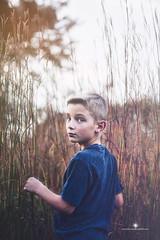 (Rebecca812) Tags: trees boy sunset field grass outdoors child blueeyes innocent meadow mysterious surprised shorthair prairie dreamlike atmospheric overtheshoulder blondhair prairiegrasses