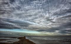 Cuxhaven - One sky (Pana53) Tags: sky clouds landscape nikon meer wasser outdoor himmel wolke wolken struktur delta damm landschaft nordsee watt elbe horizont schiffe ebbe cuxhaven niedersachsen flut bundesland naturfoto gezeiten mndung landschaftsaufnahmen nikond810 pana53 naturundlandschaftsfotografie photographedbypana53