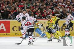 "DEL16 Kölner Haie vs. Krefeld Pinguine 17.01.2016 078.jpg • <a style=""font-size:0.8em;"" href=""http://www.flickr.com/photos/64442770@N03/24911338296/"" target=""_blank"">View on Flickr</a>"