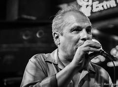 Bluesman RJ Mischo (MarcCooper_1950) Tags: musician music bar losangeles nikon livemusic blues performer lightroom tarzana d810 marccooper 2470mmf28nikon mauisugarmillsaloon cadillaczackbluesparty
