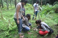 Students installing pitfall traps (mansi-shah) Tags: rainforest farming coorg madikeri biodiversity pitfall forestecology mansishah rainforestretreat jenniferpierce ceptsummerschool