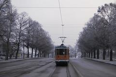 Morgonpendling (tusenord) Tags: morning urban fog tram norrköping strömmen spårvagn morgon dimma fotosondag fs160313