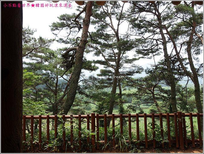 光州 歌辭文學館 息影亭 (10).JPG