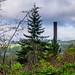 Packard Saw Mill (Twin Peaks)