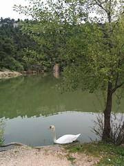 2016-04-02 12.57.16 (kitsosmitsos) Tags: lake parnitha    beletsi  parnais mpeletsi ippokrateiospoliteia
