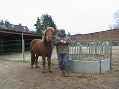 R0026452 (joachimelbing) Tags: mit lustig yoyo spielen pferden yoyogame