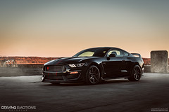 2016 Shelby GT350R (George.Bucur) Tags: toronto ford nikon driving shelby mustang emotions motorcar 2016 d810 gt350r bucurfoto