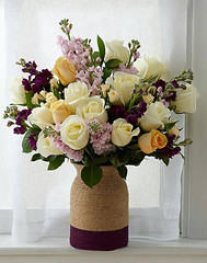 Here it is some beautiful flowers (PhotographyPLUS) Tags: pictures graphics photos illustrations images stockphotos articles footage stockimage freephoto stockphotograph