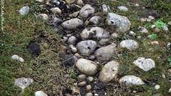 Sur le chemin (hobbyphoto18) Tags: way pentax pebbles cobble chemin cailloux galets k50 pentaxk50