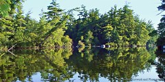 Still Water (joyolsonnichols) Tags: summer lake nature reflections landscape outdoors islands pond maine kayaking nichols parkerpond mainepond