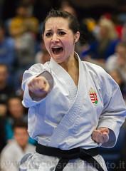Europei jka 2016-1002.jpg (Lucavis) Tags: dublin championship european karate championships dublino campionato jka europei