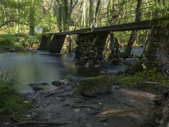 Puente Presas del Rey (nO_VR) Tags: bridge ro forest river puente spain europe olympus galicia galiza bosque nd omd hoya kpr ferrol ferrolterra narn filtrond zuico filtrohoya olympusomd olympusomdem5markii presasdelrey