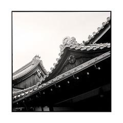 roofs  osaka, kansai  2015 (lem's) Tags: japan rolleiflex temple roofs osaka kansai japon planar toits