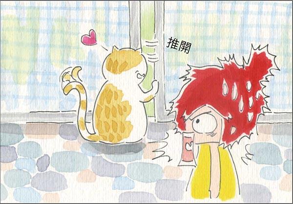 家裡來了一隻貓 學會開門