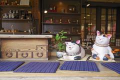Lives of Cats (sim_limited) Tags: cats japan lives ise pentaxlife pentaxart pentaxflickraward pentaxawards okageyokochoalley
