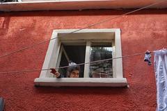Shyness (cemkivircik) Tags: food love girl smile look speed cat amazing colorful style follow lookup trainstation passage bnw streetview urbanscape photooftheday picoftheday followme mirrorless letsgosomewhere allshots objektifimden bestoftheday phototurkey sonyshooter anlatistanbul iphoneonly streetphotoclub archidaily instagram follow4follow 20likes webstagram instadaily tweegram instagood instago instalike instacool instagramturkey like4like instafollow tagsforlikescom tflers igworldclub aniyakala bnwlife istanbuldayasam turkishfollowers photographerstr bugununkaresi birdakika turkinstagram igistanbul sonyalpha6000 igtoday blackandwhiteisworththefight instamagazine igglobalpeople igeurasia tagsforlikesapp sonya6000camera featuremebest igphotoclub dijitalaynasiz igpowerbeniminsanlarim