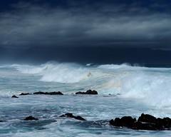 DSC_5289 e5 (J Telljohann) Tags: hawaii maui hookipa