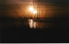 Film18 (ShipOfThunder) Tags: sea film car 35mm canon lights pier seaside exposure doubleexposure double dorset a1 filmcamera canona1 35 triple bournemouth sandbanks poole tripleexposure