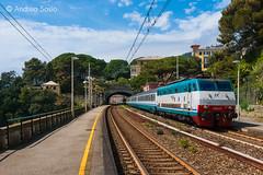 E.444R.011 TI (Andrea Sosio) Tags: train ic italia liguria stazione treno tartaruga 011 intercity trenitalia 665 zoagli ferroviedellostato nikond60 e444r e444 andreasosio