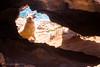 12-Marcos-Marco natural  #perro #dog #marco #frame #natural #2016 #calblanque #murcia #españa #spain  #animal #love #mar #sea #mediterráneo #naturaleza #nature #paisaje #landscape #photography #photographer #sonyalpha #sonyalpha350 #sonya350 #alpha350 (Manuela Aguadero PHOTOGRAPHY) Tags: sea españa dog naturaleza love nature animal landscape photography mar spain photographer natural paisaje perro murcia frame marco mediterráneo 2016 calblanque sonyalpha sonyalpha350 sonya350 alpha350