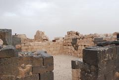 Qasr Hallabat - Umayyad Palace (jrozwado) Tags: museum asia mosque jordan islamic  umayyad desertcastle umayyadpalace   hallabat qasralhallabat