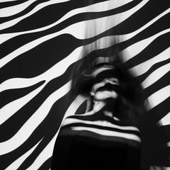 20160418_5148edit (Hatleskog photography) Tags: blackandwhite abstract lines pattern projector experiment surreal zebra minimalism edit zeb