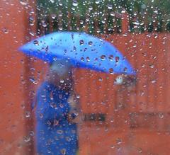 Feeling the Blues! (Seor Thunder) Tags: life city people color rain umbrella walking sadness
