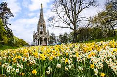 Bruxelles - Printemps (Travel_Photography) Tags: parque b flores primavera catedral bruxelles bruselas parc printemps btiment